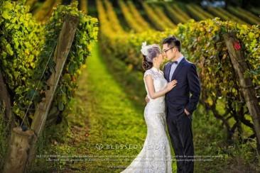 来到墨尔本,酒庄的婚纱照一定要有!